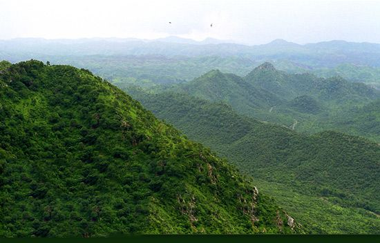 Mount Abu - An Oasis in the Desert