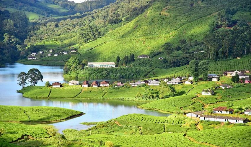 Munnar-Kerala