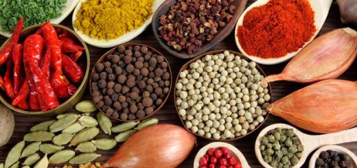India Culinary Tour – Visit the land of Spices