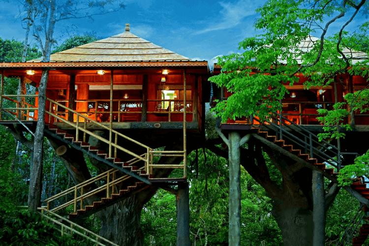 Vythiri-Tree-House-Kerala