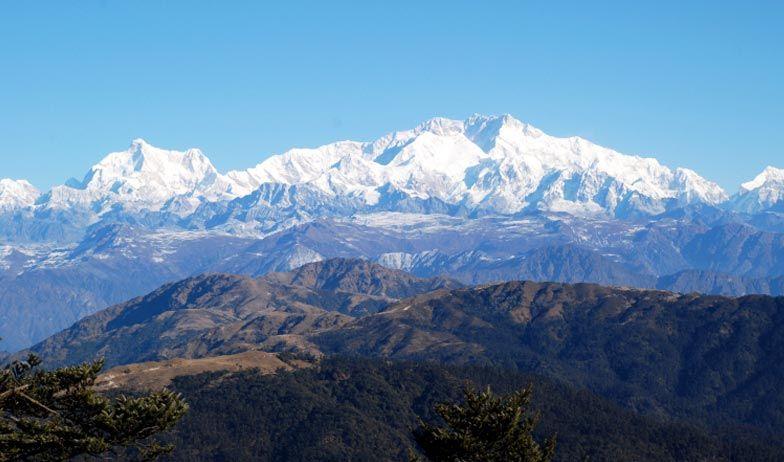 Spring in the Queen of Hills Darjeeling