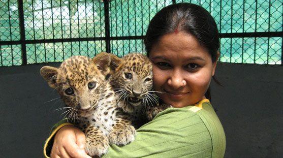 Saving The Endangered Animal Species