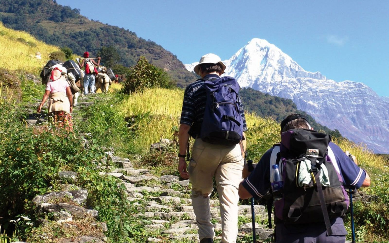 Top Four Reasons for Choosing India as Travel Destination