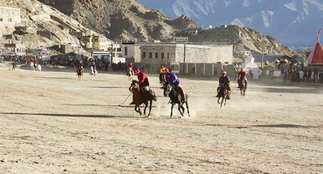 Polo in Leh Ladakh