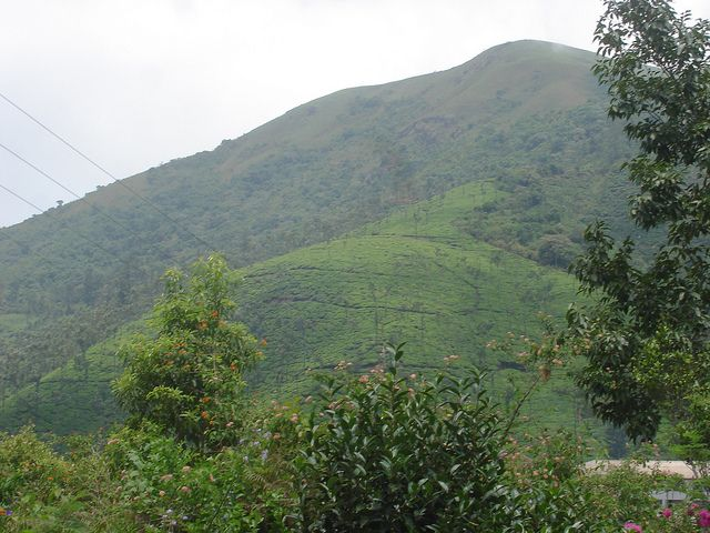 Visit Kelagur Tea Estate situated in Karnataka.