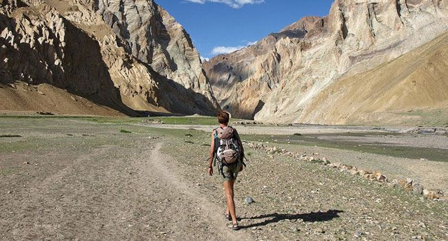 Markha Valley Trekking in Ladakh