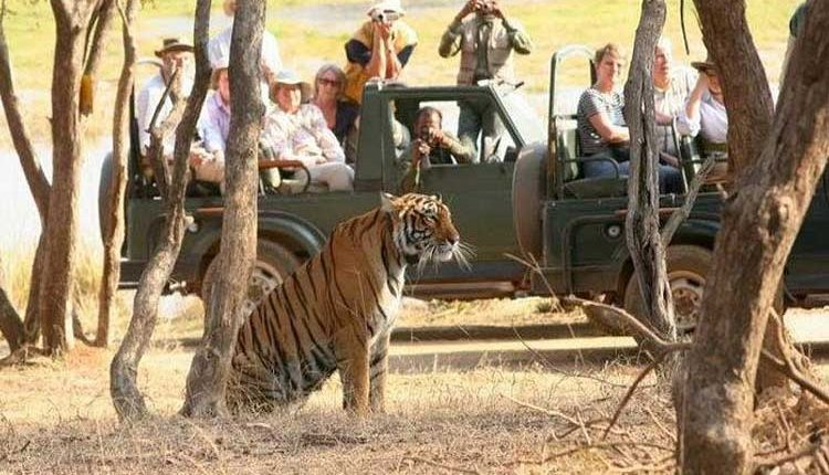 Top 20 National Parks in India in 2020-2021