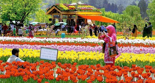 Gardens of Srinagar