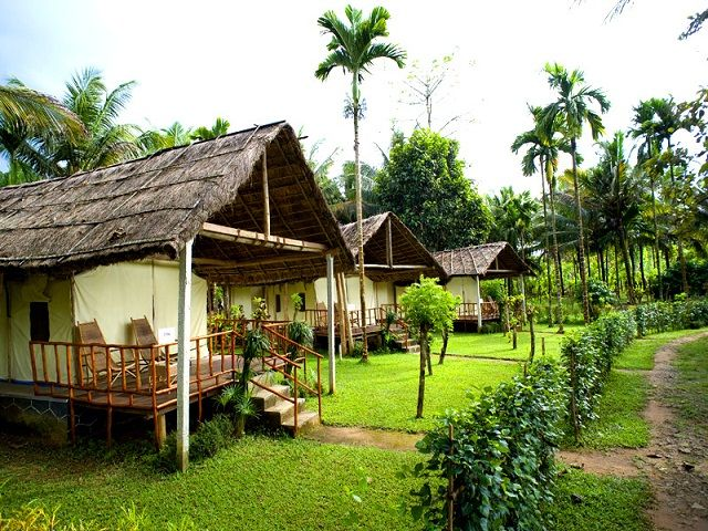 Hornbill Camp in Thattekkad , Kochi