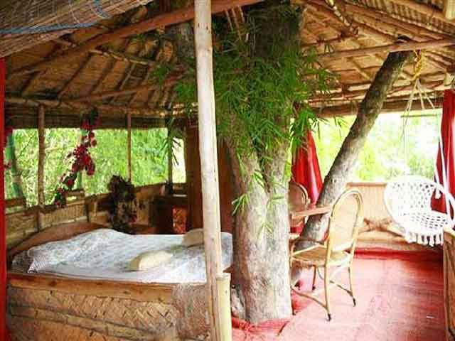 Safari Land Tree House, Masinagudi