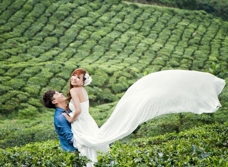 honeymoon-in-munnar-kerala
