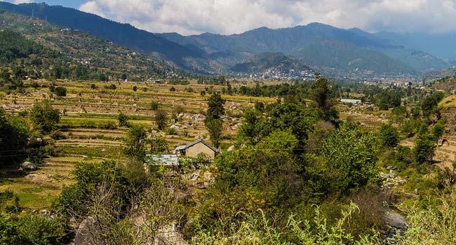 Chindi, Himachal Pradesh