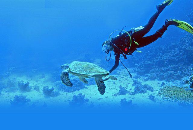 Snorkeling, Havelock Islands