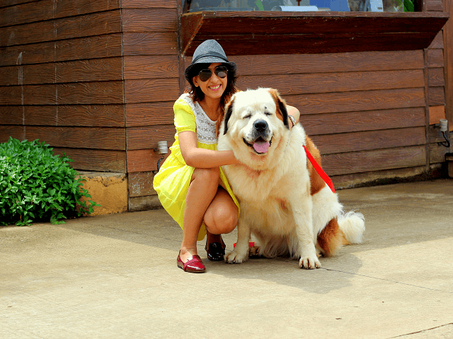 15 Best Pet Friendly Hotels in India