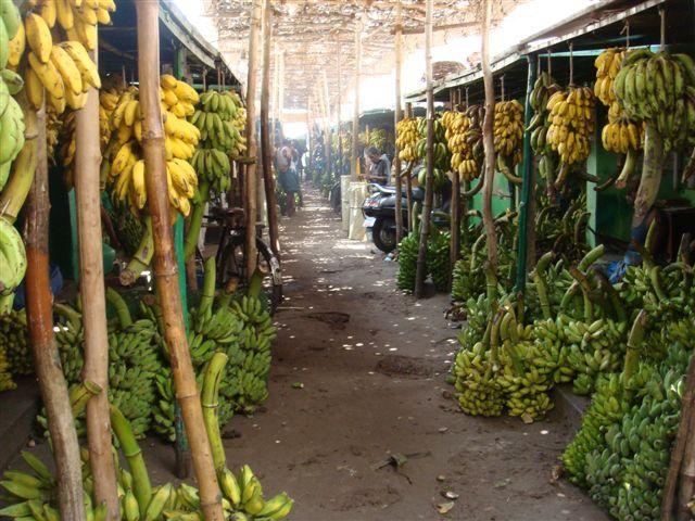 Banana market Madurai