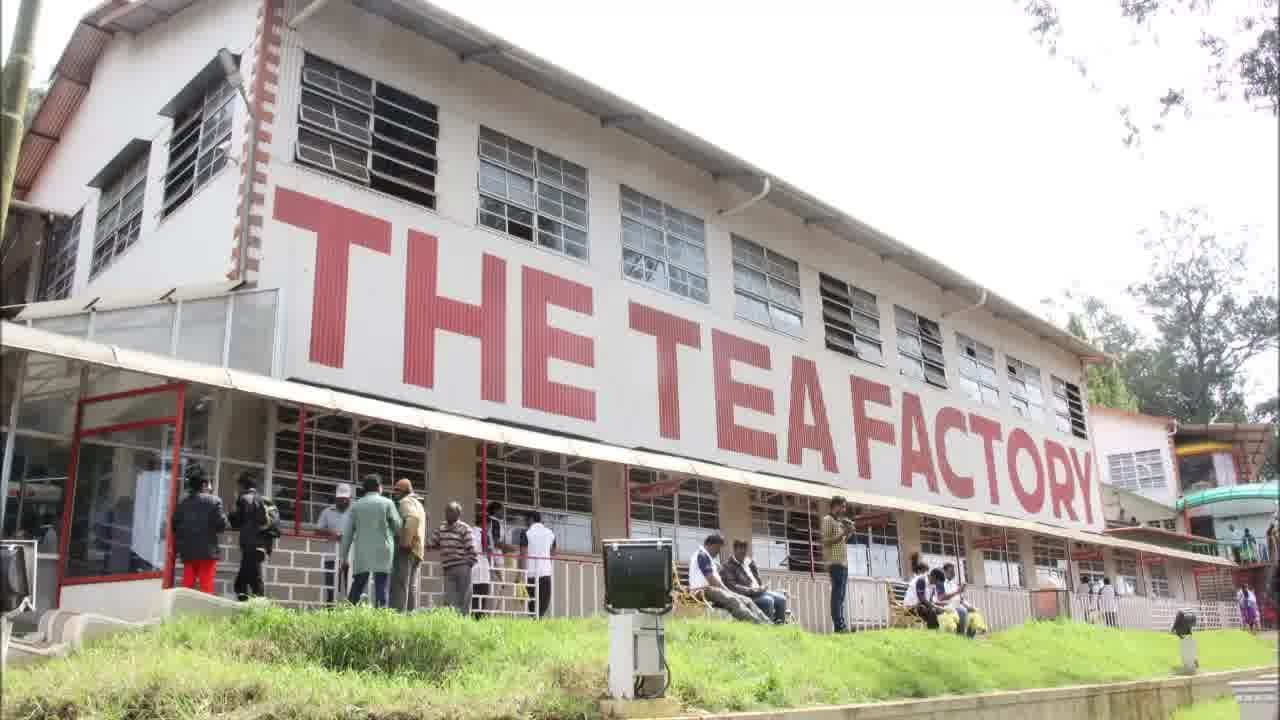 Doddabetta tea factory Ooty