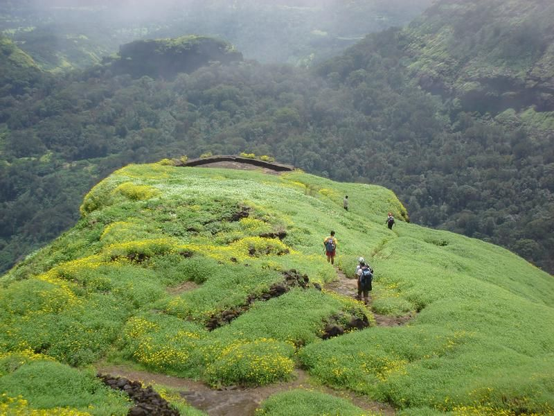 Trekking at Nilgiri Hills