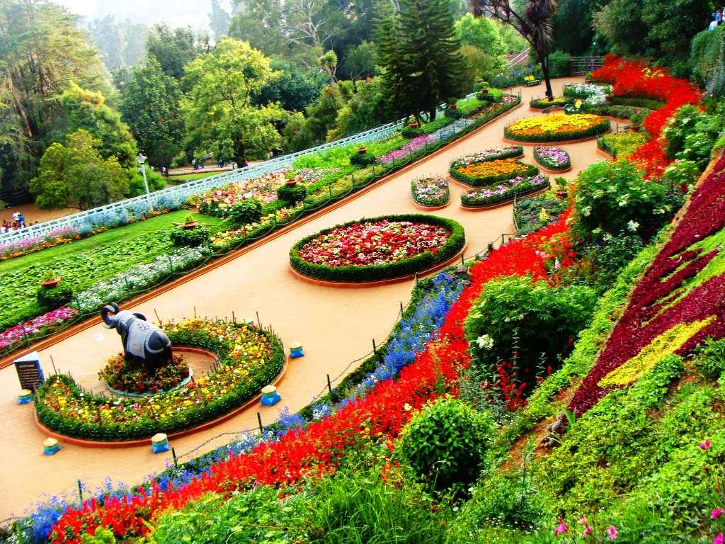 Botanical Garden Ooty