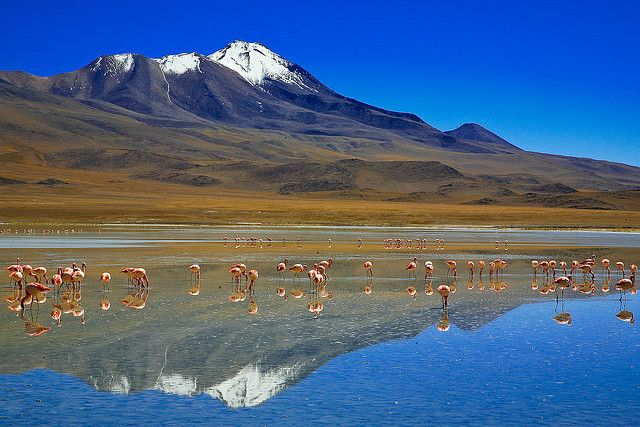 Bolivia: Country in South America