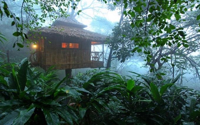 vanya-tree-house-thekkady