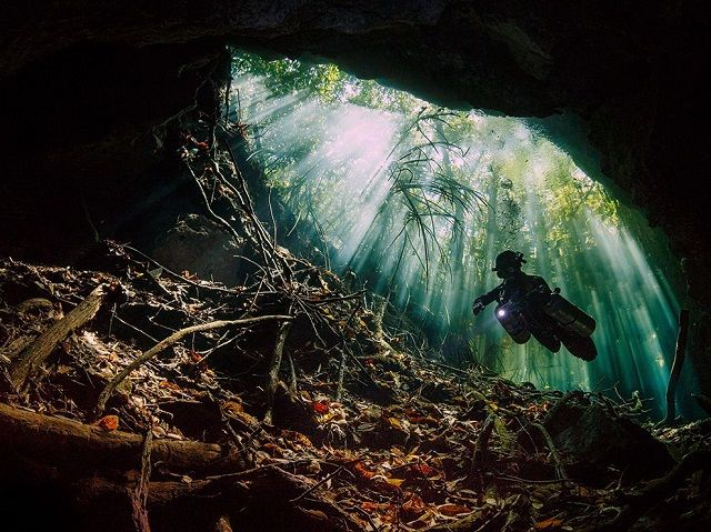 The Riviera Maya is known for the best cenotes cavern and cave diving in the world
