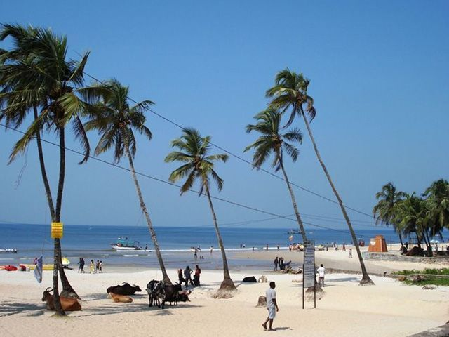 Colva-beach