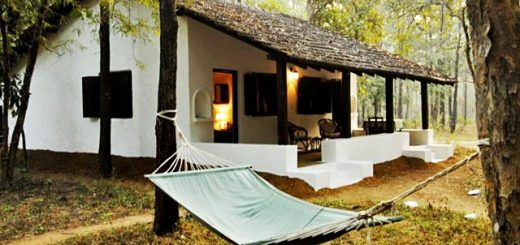 Top 10 Luxury Resorts near Kanha National Park