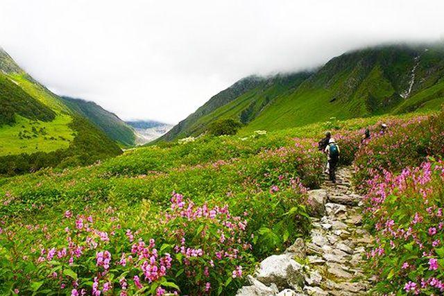 Trek-in-valley-of-flower