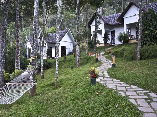 Niraamaya Retreats Cardamom Club in Thekkady