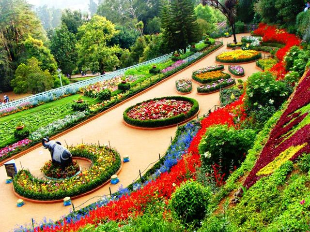Top 14 Things to Do in Ooty-Unbeatable Attractions You Can't Miss