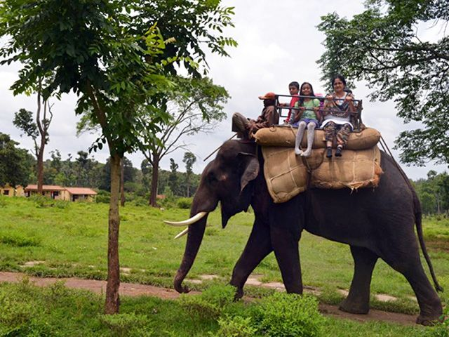 Dubare Elephant Camp: must visit places in coorg