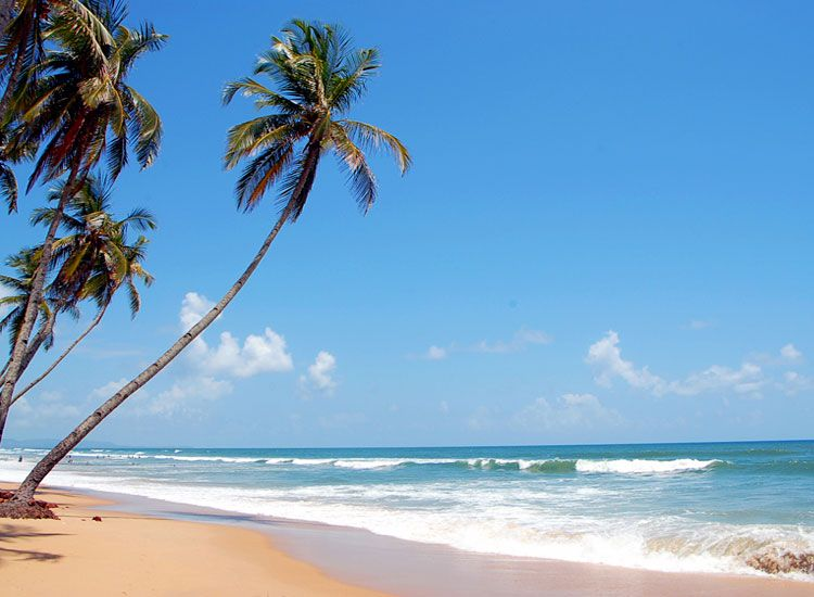 Goa Tourism: Best Things to Do in Goa