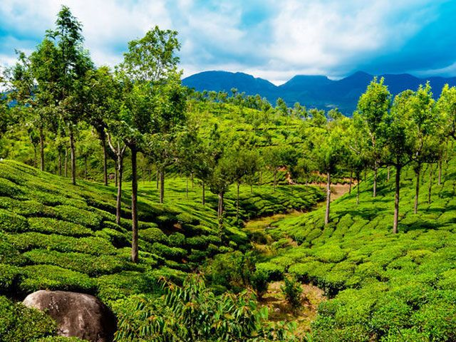 10 Best Tourist Places in Kerala that you must visit in 2021