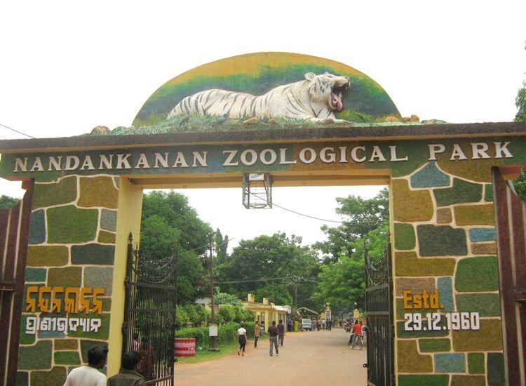 nandankanan-zoological-park