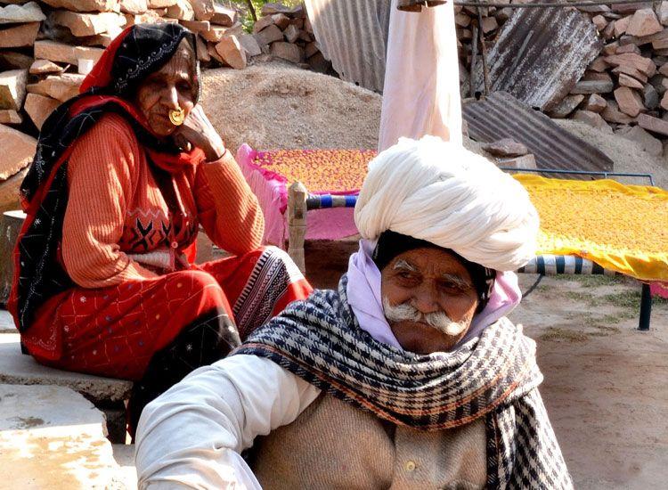 Culture of Bishnoi Village