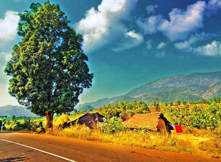 15 Most Popular Tourist Places In South India During Summer