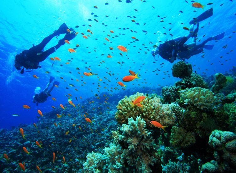 10 Popular Destinations for Water Sports Activities