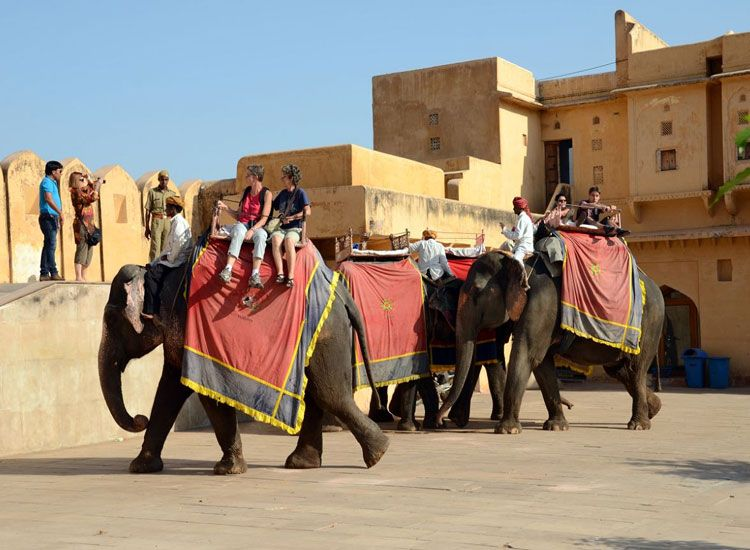 Amer fort is located in a hill so you have an option to hire elephant for ride from base to hill. It is a unique experiance in itself.