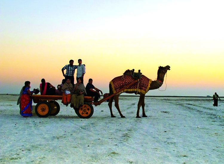 Witness the colors of Gujarat at Kutch Rann Utsav 2020-2021