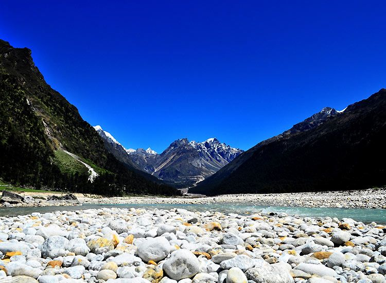 Yumthang Valley - one of the best places in the Himalayas for summer vacations in India