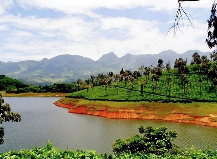 11 Amazing Things to do in Munnar to include in your itinerary