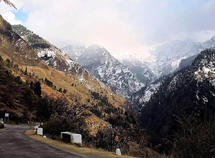 Famous National Parks and Wildlife Sanctuaries in Himachal Pradesh that You Should Visit