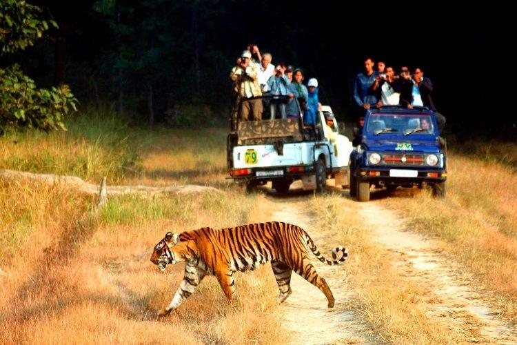 30 Best Weekend Getaways From Delhi Within 100 - 500 kms in 2020-21