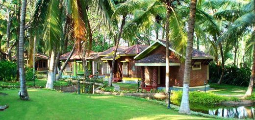 Kairali Ayurvedic Healing Village Health Resort