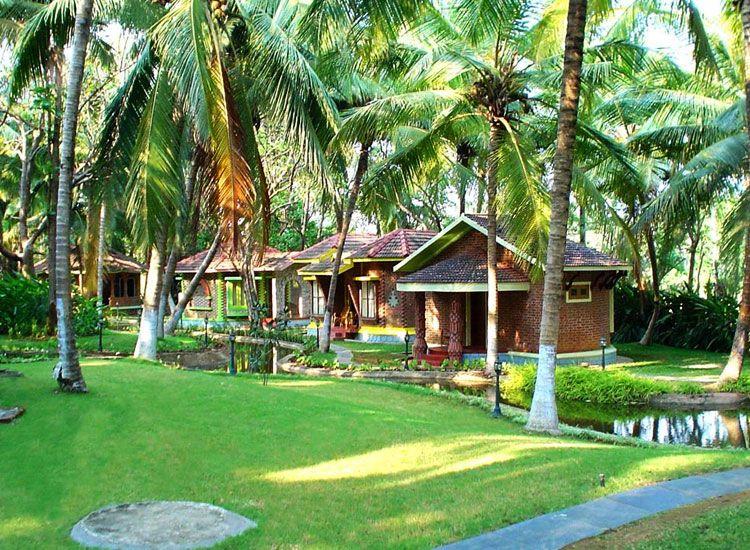 Kairali Ayurvedic Healing Village Health Resort
