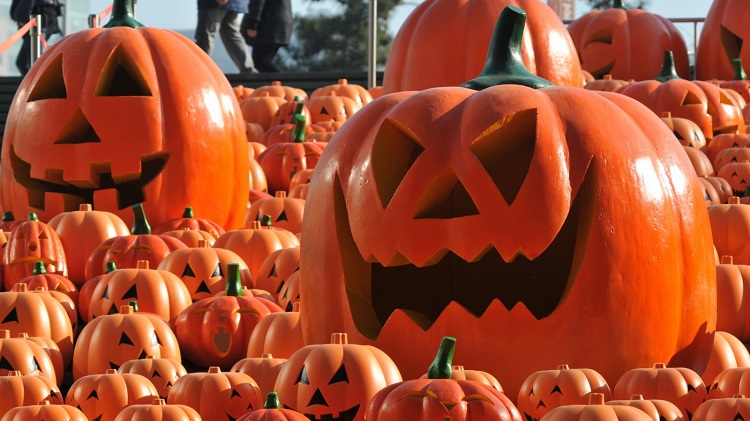 Celebrate Halloween In India