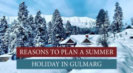 Summer holiday in Gulmarg