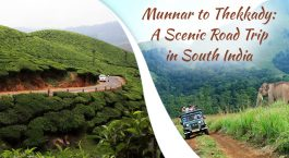 Munnar-to-thekkady-by-road