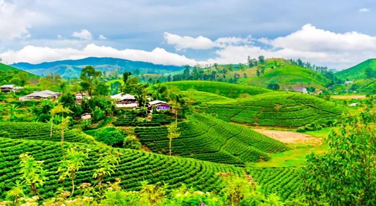 Best-Places-to-Visit-Near-Kolkata-in-April-taki-Darjeeling