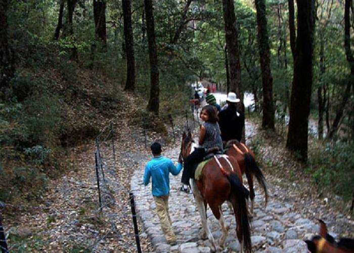 horse ride in chakrata